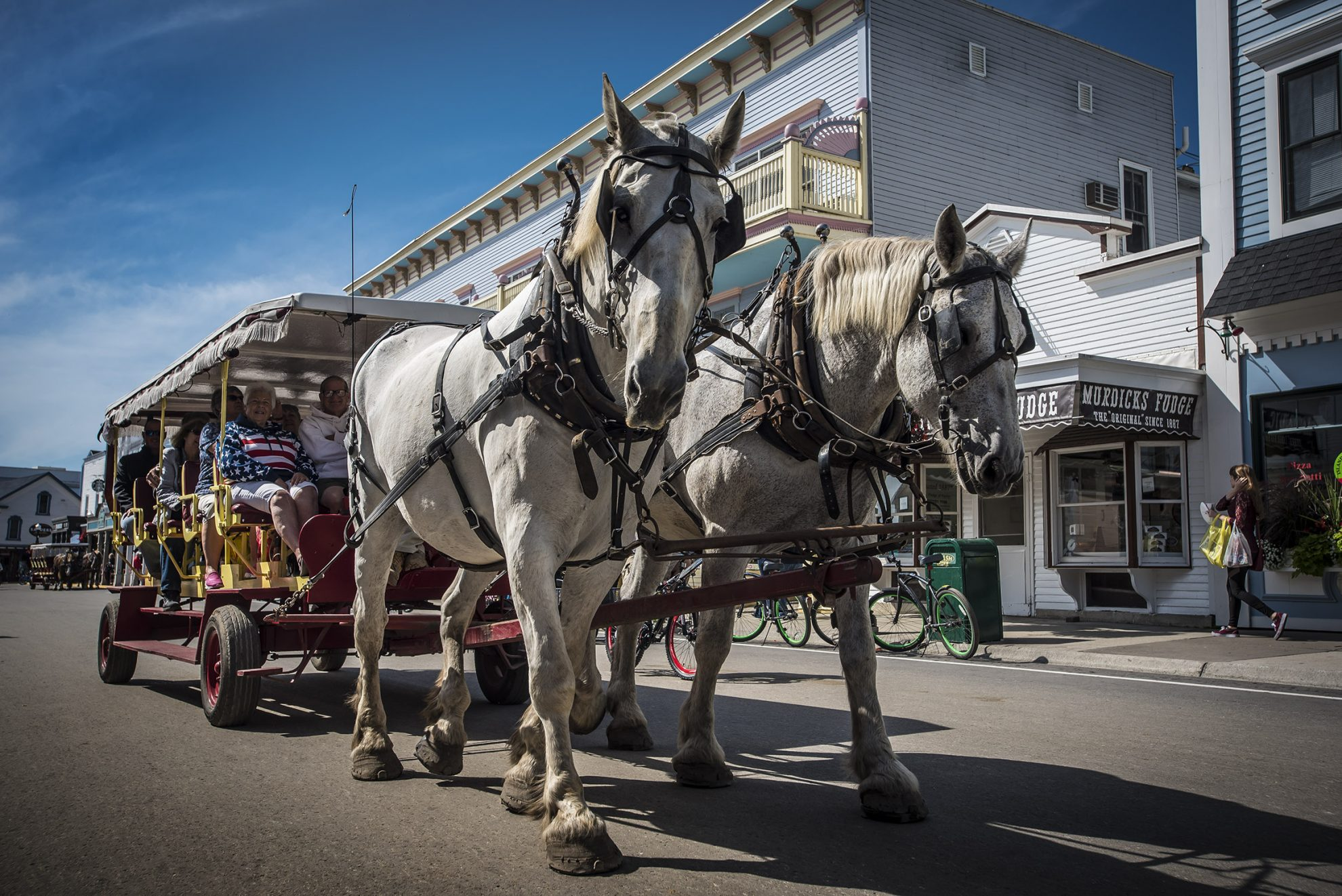 Mackinac Island Horses and Carriages